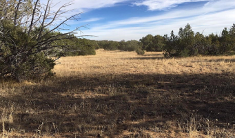 N Last Chance Road, Seligman, Arizona 86337, ,Land,For Sale,N Last Chance Road,1096