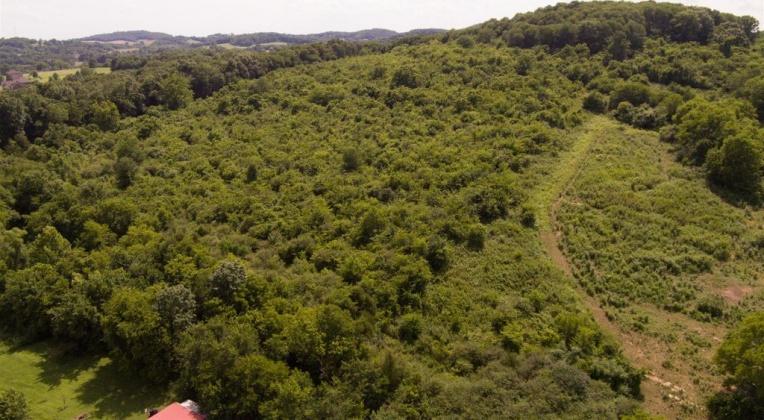 0 Dalton Hollow Rd.,Hartsville,Tennessee 37074,Land,0 Dalton Hollow Rd.,1106