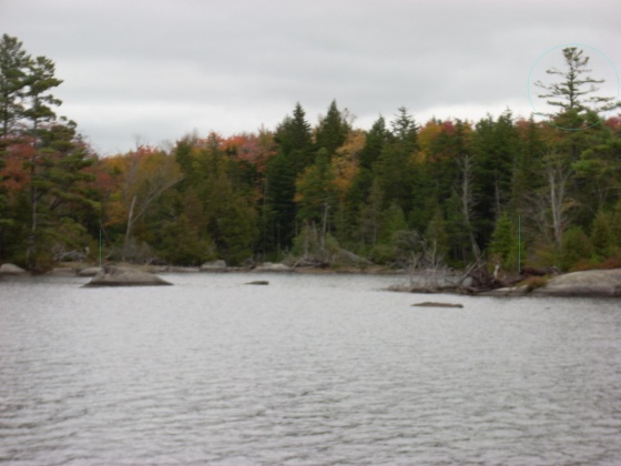 E Hopkins Pond Road,Mariaville,Maine 04605,Land,E Hopkins Pond Road,1119