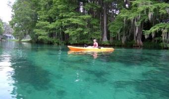 Dunnellon, Florida, ,Land,Sold,1142