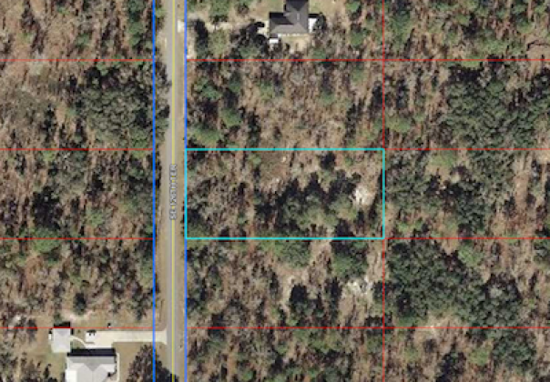 dunnellon, Florida, ,Land,Sold,1163