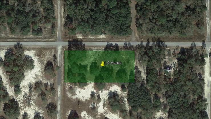 dunnellon, Florida, ,Land,For Sale,1169