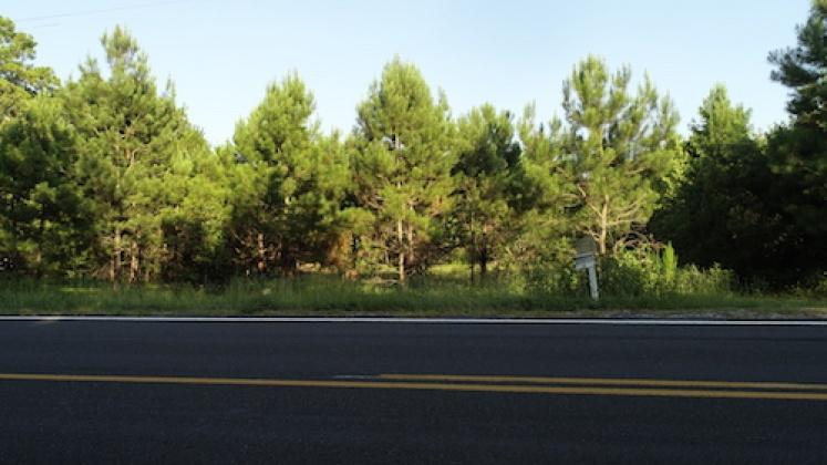 4844 Singletary Church Rd., Lumberton, North Carolina, ,Land,For Sale,4844 Singletary Church Rd.,1000